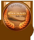 medals-bronze
