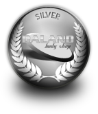 medals-silver